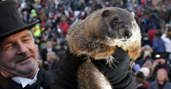 4 Groundhog Day Trivia Questions